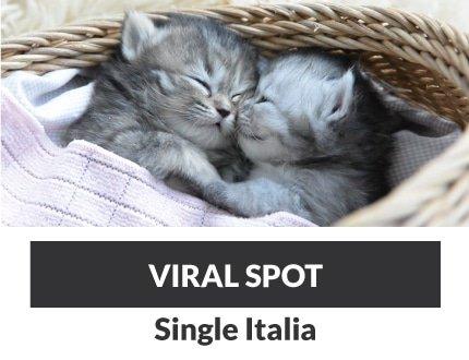 VIRAL_SPOT_SI_QUADROTTO